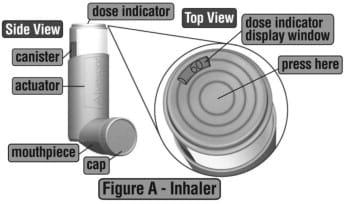 Parts of your Alvesco Inhalation Aerosol