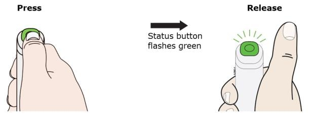 Press and release the status button. The status button will start to flash green. You will hear a click when the injection starts image.