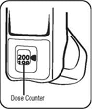 After priming your ProAir HFA inhaler for the first time the dose counter should display the number 200.