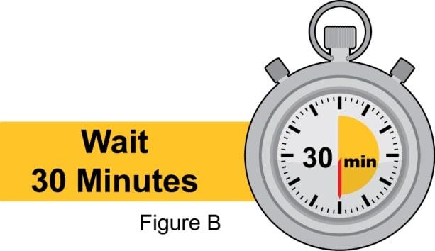 Wait 30 minutes.
