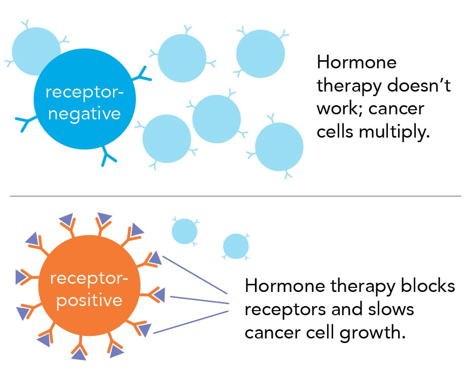 hormone therapy, receptor negative vs positive