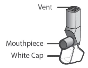 There are 2 main parts of your Qvar Redihaler including: the inhaler body with the mouthpiece. The white cap that covers the mouthpiece of the inhaler.