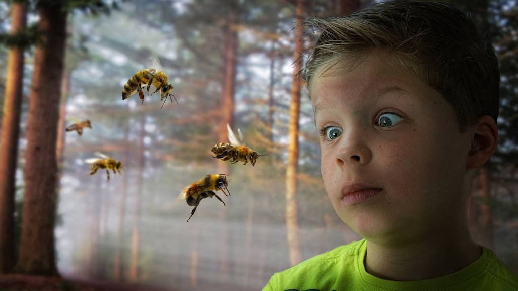 Boy scared of bees