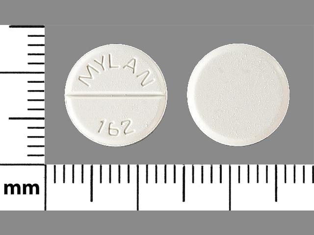 Imprint MYLAN  162 - chlorothiazide 500 mg